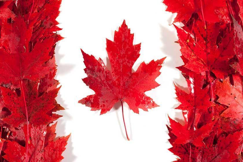 چطور ویزای کانادا بگیریم؟