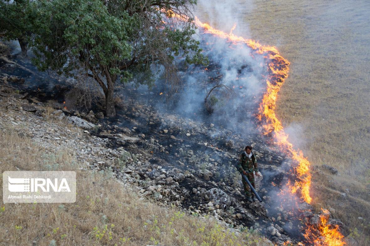 خبرنگاران 90 درصد آتش سوزی عرصه های طبیعی در کردستان سطحی است