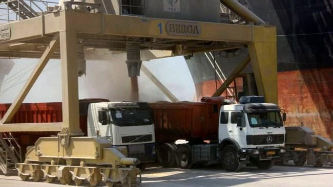 ترخیص و توزیع 1.6 میلیون تن نهاده دامی شروع شد