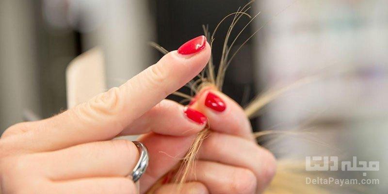 درمان خانگی موخوره بدون احتیاج به کوتاهی