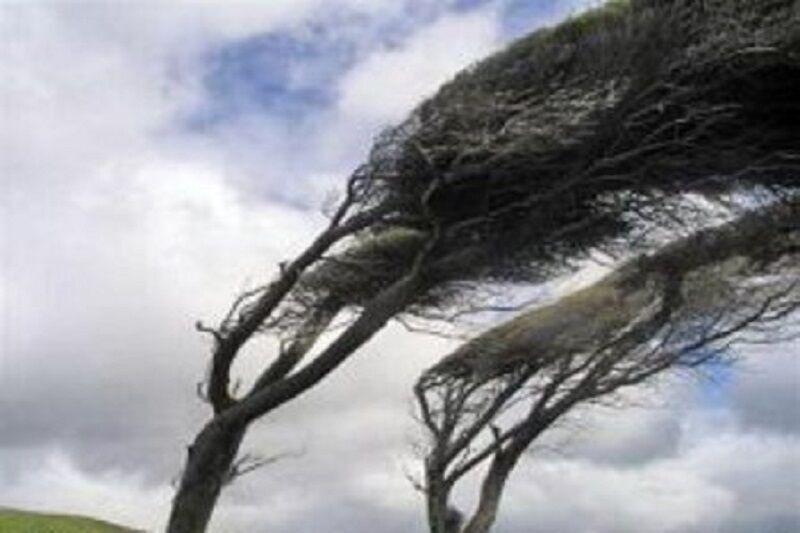 خبرنگاران سرعت وزش باد در قصرشیرین به 38 کیلومتر در ساعت رسید