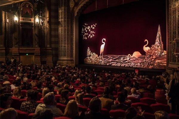 تاریخ برگزاری جشنواره فیلم نیوزیلند تغییر کرد خبرنگاران